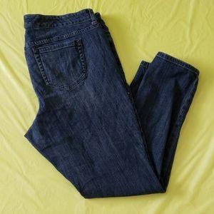 TORRID premium embellished skinny jeans